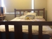 Double Wooden Slat Bed for Sale